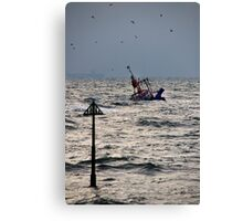 The Price of Fish Canvas Print