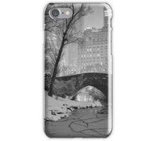 Cracked Lake Under Gapstow Bridge iPhone Case/Skin