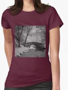 Cracked Lake Under Gapstow Bridge Womens Fitted T-Shirt
