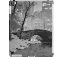 Cracked Lake Under Gapstow Bridge iPad Case/Skin