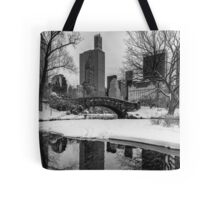 Winter Fun at the Gapstow Tote Bag