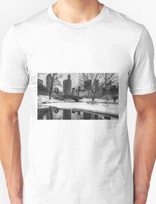 Winter Fun at the Gapstow Unisex T-Shirt