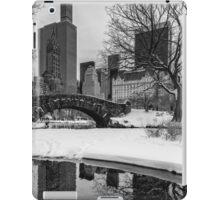 Winter Fun at the Gapstow iPad Case/Skin