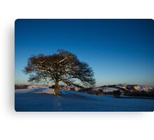 blue skies and cold fields Canvas Print
