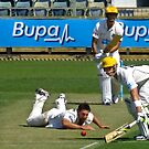To the fence for 4 - The WACA, Perth, Western Australia by Karen Stackpole