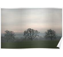 Trees in Fog, Near Leyburn. Poster