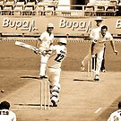 How's that!!! - The WACA, Perth, Western Australia by Karen Stackpole