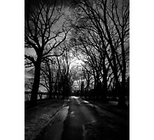 Lake Drive Photographic Print
