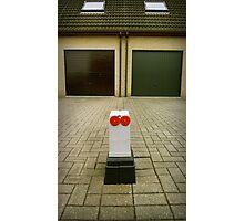 Suburbian robot Photographic Print