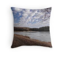 A Scene from Today Throw Pillow