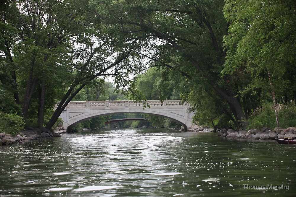 The Yahara River by Thomas Murphy