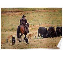 Rounding the herd Poster