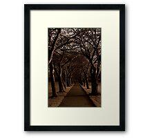 Enchanting Pathway Framed Print