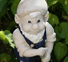 One very special garden gnome by DJ-Stotty