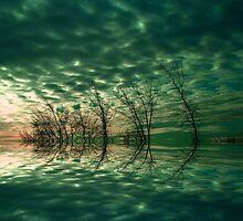 Quiet Mind  by Elfriede Fulda