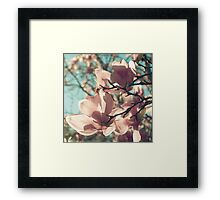 already blooming Framed Print