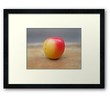 Half way Cherry Framed Print