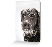 Snow Beard Greeting Card