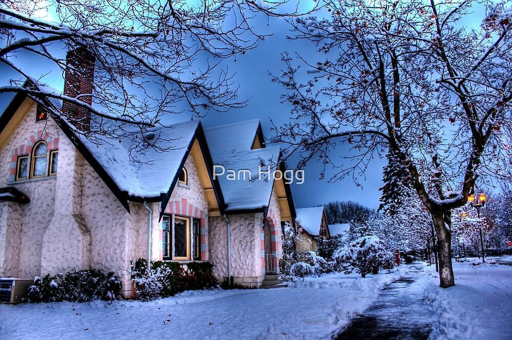 Kelowna Winter by Pam Hogg
