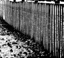 The Fence built with love and money by Scott Mitchell