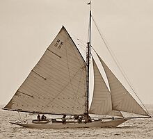 Sayonara at Geelong Wooden Boat Festival 2010 by Tom Smeaton