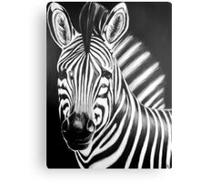 zebra painting Canvas Print