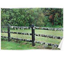 Mossy fence - West Coast New Zealand Poster