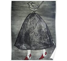 Blue Wren carrying Lace Poster