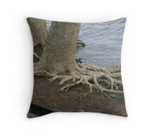 Trees at Edge of the River Throw Pillow