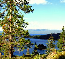 """Beautiful Tahoe"" by Lynn Bawden"