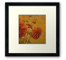 Dalias in Orange Framed Print