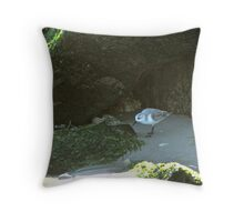 Dining in the Grotto Throw Pillow