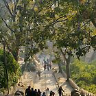 Swayambunath Morning 3 by Harry Oldmeadow