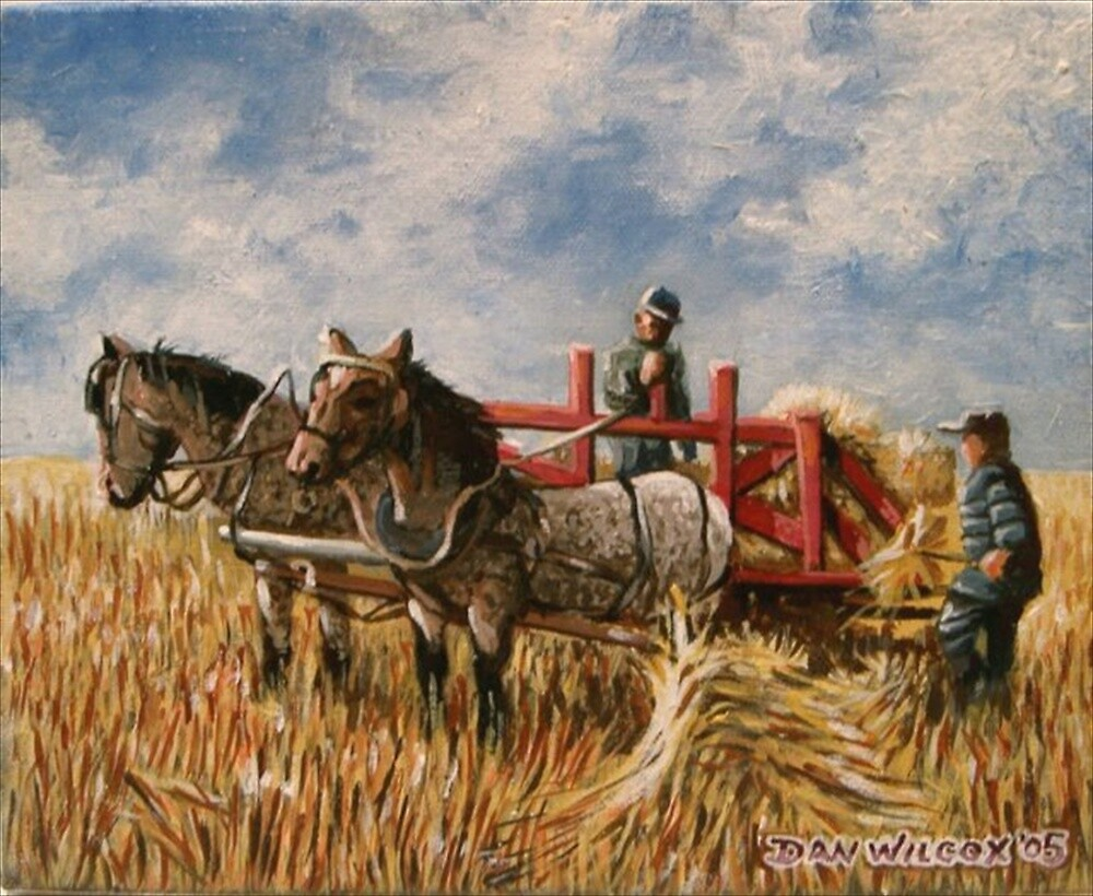 Harvest by Dan Wilcox