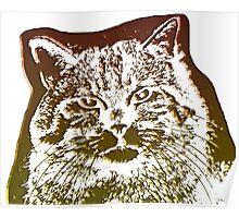 wild cat, 3d Poster