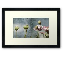 Take Two.... Framed Print