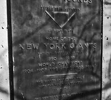Site of the Polo  Grounds' Home Plate - New York, New York by michael6076