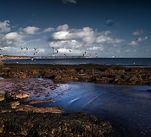 Rockpool by Country  Pursuits