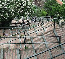 400 Stairs by Robyn Forbes