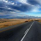Road by Walter Cahn