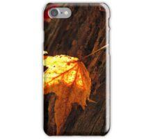Golden Goodness iPhone Case/Skin