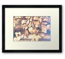 Enjoy the moment. Framed Print