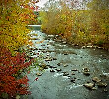 Perkiomen Creek in Autumn by MotherNature