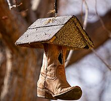 Redneck Cowboy Boot Birdhouse  by Bo Insogna