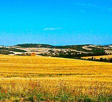 Tuscany by bertsimo