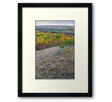 Sage Hillside Framed Print