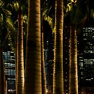 Palm Tree Rising by Kasia-D