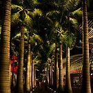 Under Palms by Kasia-D
