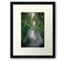 Path to Heaven on Earth Framed Print