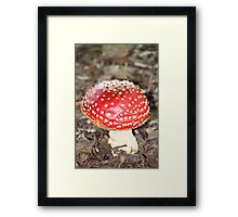 Dazzlingly Deadly Framed Print